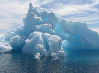 I ghiacci artici sopravvivono a caldo e fake news