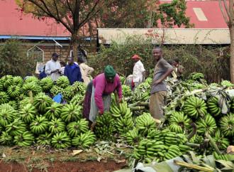 Cambiamento climatico, il mito dell'Africa innocente