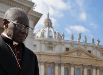 """Messe vietate a San Pietro, Sarah: """"Una violenza"""""""