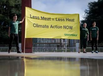Per salvare il pianeta adesso ci vieteranno la carne