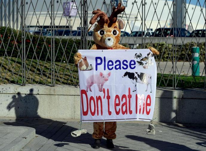 Manifestazione di vegani alla Cop25
