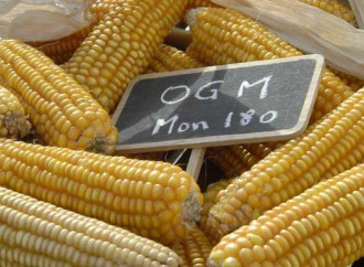 Bando OGM, Ue condanna l'Italia