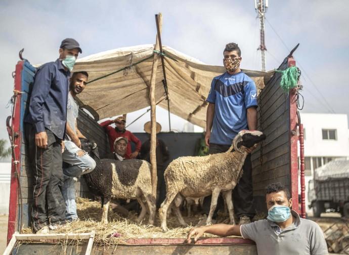 Marocco, preparativi per la festa del sacrificio