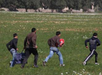 Continuano gli sbarchi di emigranti illegali e gli hotspot siciliani sono al collasso