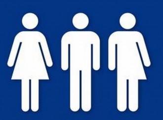 Liceo Piacenza, bagni gender free