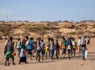 Dall'Etiopia allo Yemen e ritorno